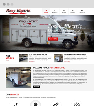 posey electric